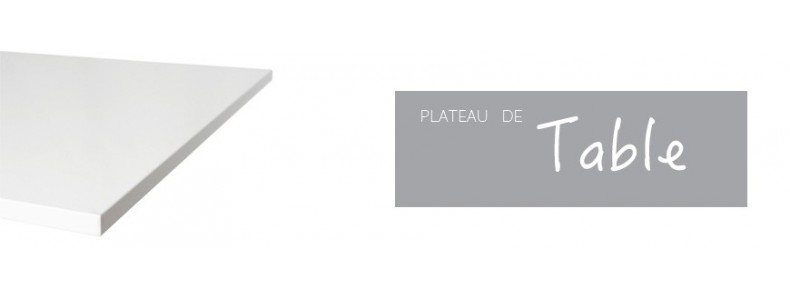PLATEAU DE TABLE
